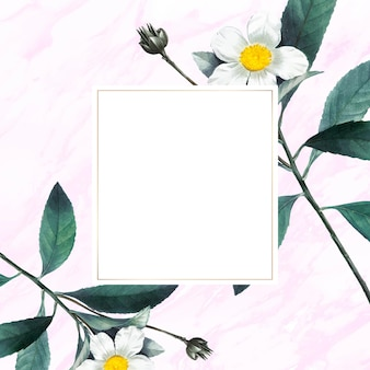 Bloem en fruit versierd frame vector