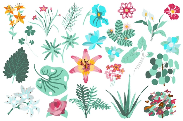 Bloem en planten geïsoleerde set lelies groene bladeren aloë bloeiende wilde bloemen bloeiende tuin