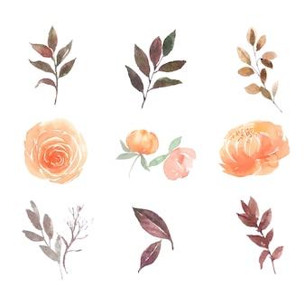Bloem losse aquarel set pioenroos, roos op wit voor decoratief gebruik.
