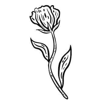 Bloem met stengel en bladeren hand getekende vectorillustratie monochrome zwarte inkt schets