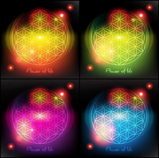 Bloem van het leven. heilige geometrie. symbool.