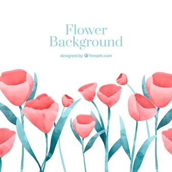 Bloemachtergrond met tulpen