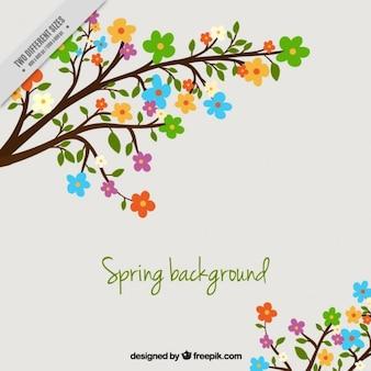 Bloemen achtergrond voor de lente
