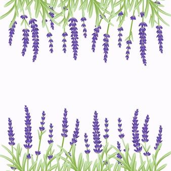 Bloemen achtergrondmalplaatjeontwerp met lavendelbloemen.