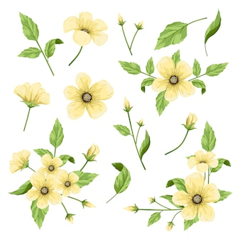 Bloemen deel collectie, bloemen element