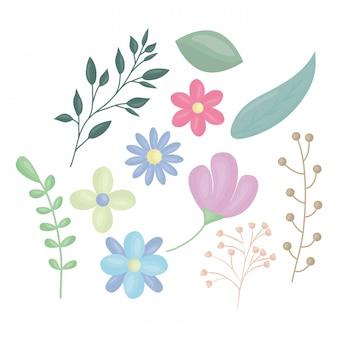 Bloemen en bladeren decoratie vectorillustratie