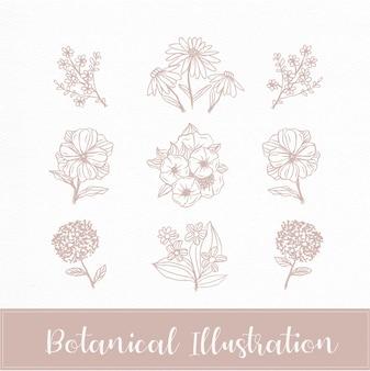 Bloemen en bloem met botanische hand getrokken stijl doodle schets sieraad