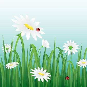 Bloemen en lieveheersbeestjes vectorillustratie