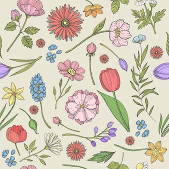 Bloemen en planten naadloos patroon met verschillende kruiden en andere planten
