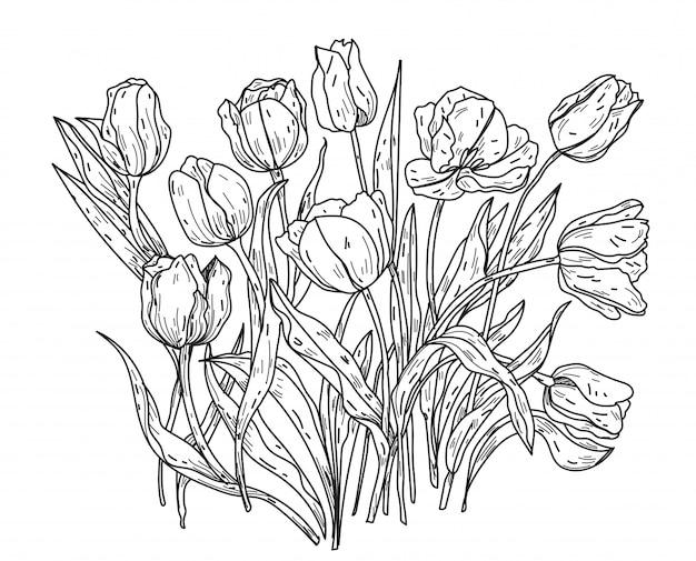 Bloemen hand tekenen en schetsen zwart en wit