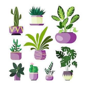 Bloemen in geplaatste potten
