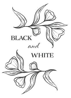 Bloemen met bloei en bloemblaadjes, gebladerte in zwart-wit, zwart-wit schetsoverzicht