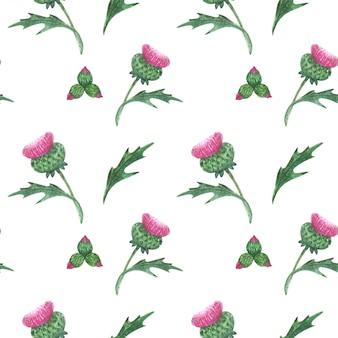Bloemen naadloos patroon met schotse wilde distel