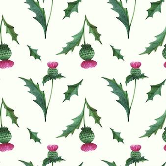 Bloemen naadloos patroon met wilde distel