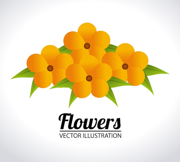 Bloemen ontwerp illustratie