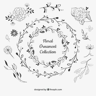 Bloemen ornamenteninzameling