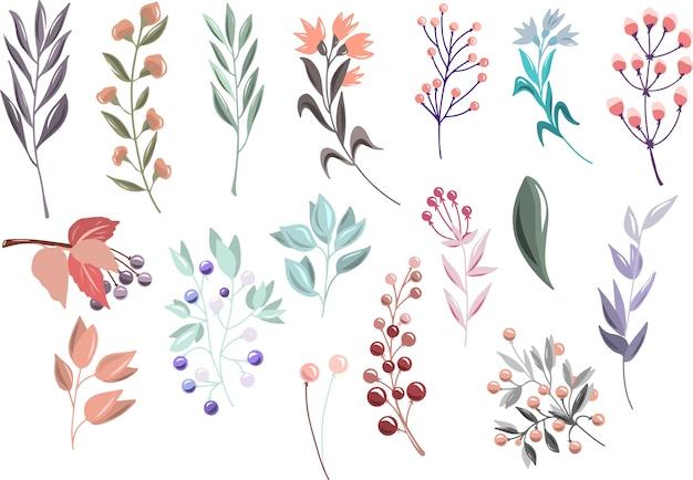 Bloemen set met takken en bessen