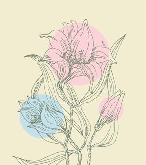 Bloemenachtergrond met lelies