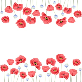 Bloemenachtergrond met papaverbloem