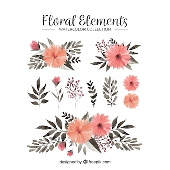 Bloemenelementeninzameling in waterverfstijl