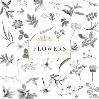 Bloemeninzameling op een witte vector als achtergrond