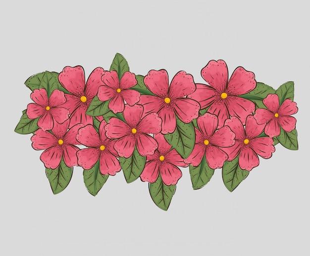 Bloemenplanten met aardbladeren en bloemblaadjes