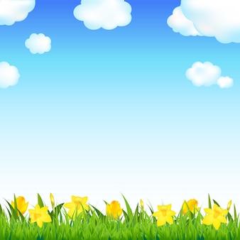 Bloemenweide met gras en wolk, illustratie.