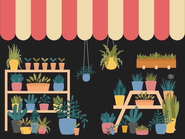 Bloemenwinkel interieur met verschillende kamerplanten in potten, plantenbakken en dozen, staande op planken en stands, met gestreepte schuur.