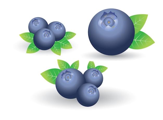 Blueberry ingesteld