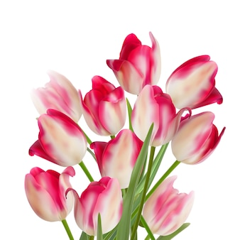 Boeket tulpen op een witte achtergrond.