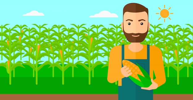 Boer bedrijf maïs.