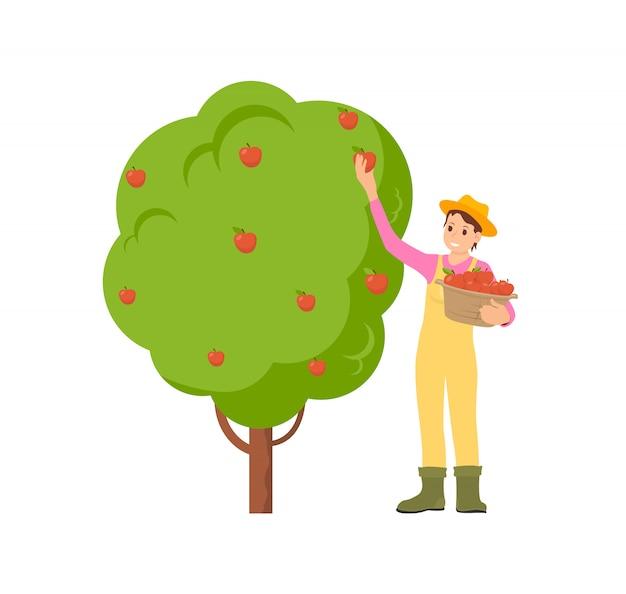 Boer oogsten seizoen illustratie