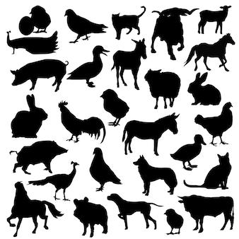 Boerderij dieren vee silhouet illustraties