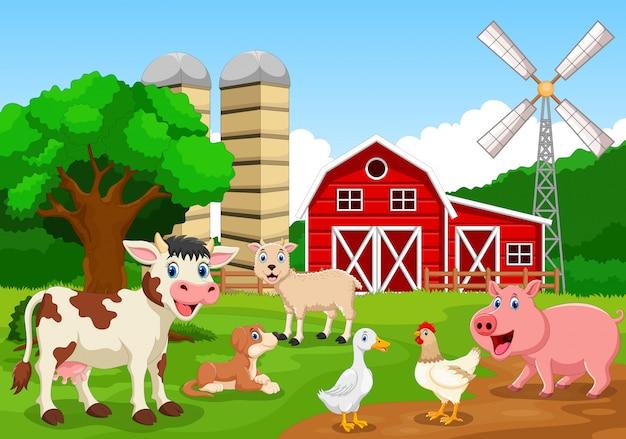 Boerderij met dieren, cartoon afbeelding