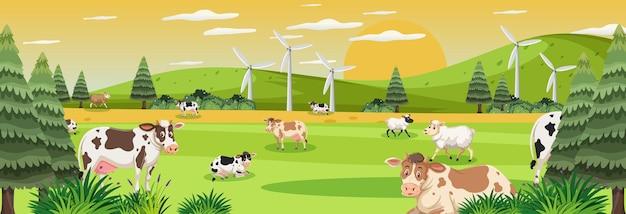 Boerderij panorama landschap met veel koeien in de wei