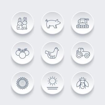 Boerderij, ranch lijn iconen set, kip en eieren, varken, gewas, groenten, zonnebloem, oogst