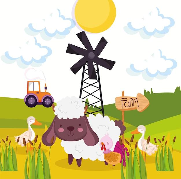 Boerderijdieren in het veld