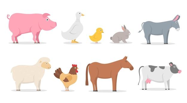 Boerderijdieren varken eend konijn schaap ezel koe paard haan kip gans platte karakters