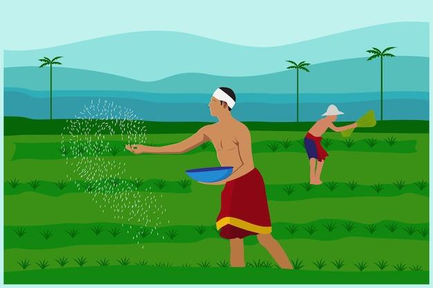 Boeren die rijst planten op de boerderij