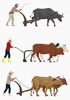 Boeren ploegen het veld met ossen vector set