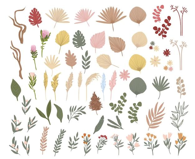Boho stijlenset etnische planten, bladeren en bloemen