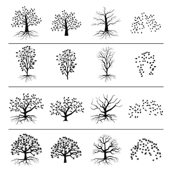 Bomen met wortels, gebladerte en gevallen bladeren die op witte achtergrond worden geïsoleerd. silhouet van boom en blad zwart-wit afbeelding