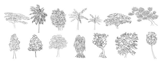 Bomen op witte achtergrond