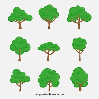 Bomenverzameling in hand getrokken stijl