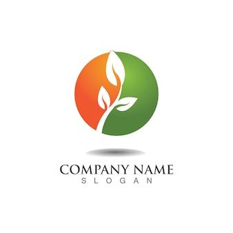 Boom blad logo ontwerp milieuvriendelijk concept