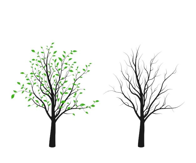 Boom silhouet met groene bladeren en zonder geïsoleerd op een witte achtergrond. vector illustratie