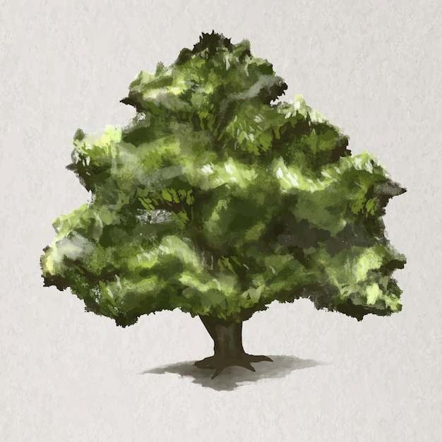 Boomelement vector eikenboom