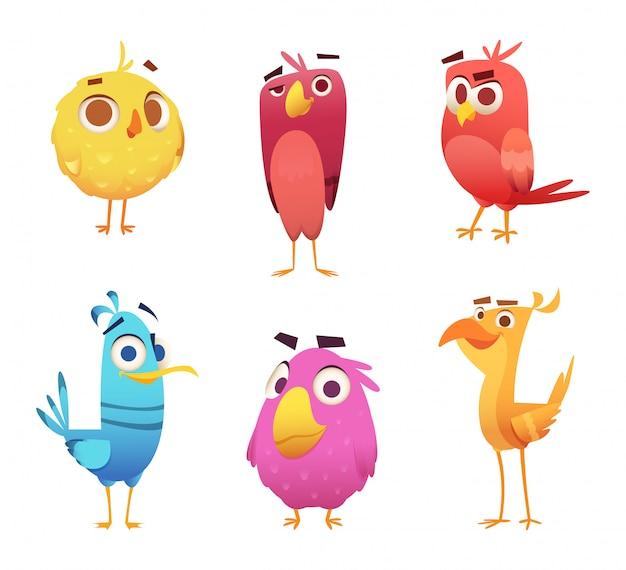 Boos cartoon vogels. kiparend kanarie dierengezichten en veren spel karakters van gekleurde vogels