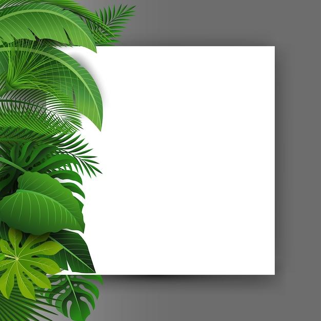 Bord met tekst ruimte van tropische bladeren