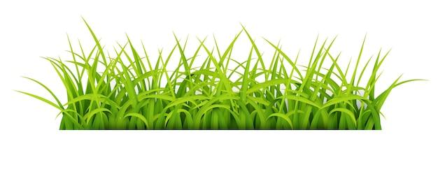 Bord met tekst ruimte van young grass